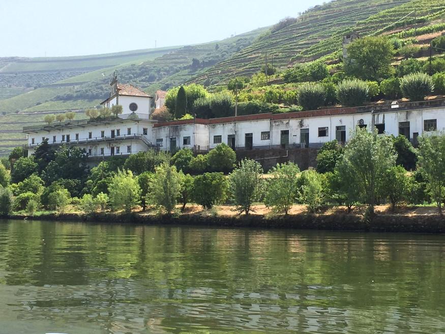 Douro from Pinhau 4.JPG