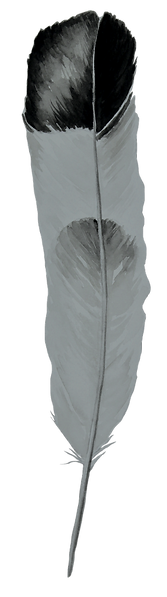 Plume%25205_edited_edited.png