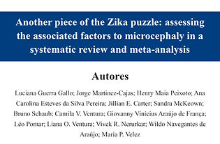 Another piece of the Zika puzzle assessi