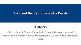 Zika and the Eye Pieces of a Puzzle.jpg