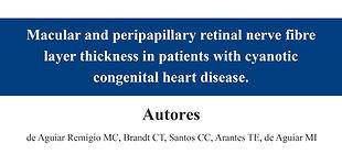 Macular and peripapillary retinal nerve