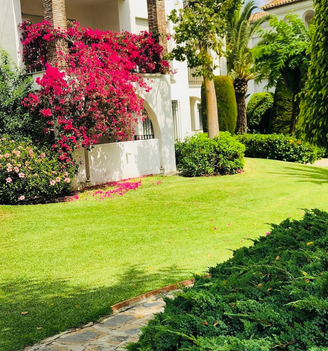 Hacienda Beach Garden