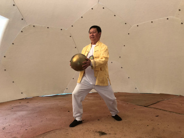 masterchoy with golden ball.jpg