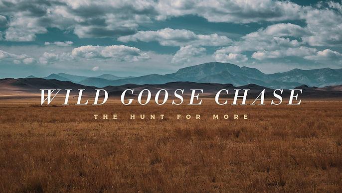 Wild Goose Chase-Main Slide.jpg