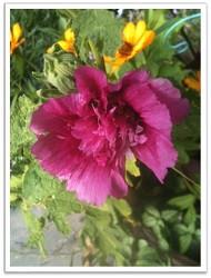 October_Pic_6.jpg