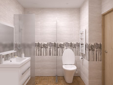 Home09_Bathroom_CAM01.jpg