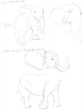 elephant study04.jpg