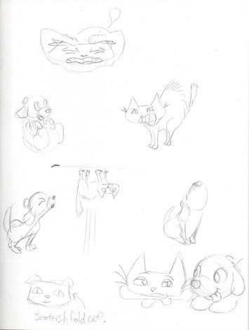 cat and dog01.jpg