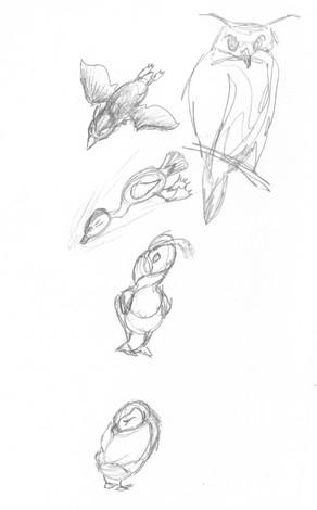 bird study05.jpg