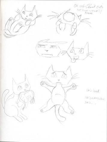 cat study02.jpg