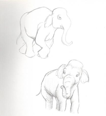 elephant study10.jpg
