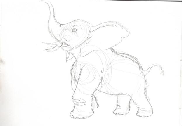 elephant study06.jpg