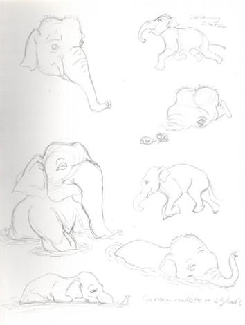 elephant study07.jpg
