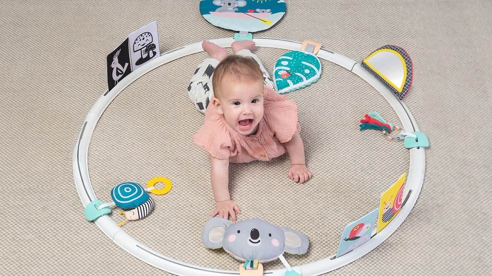 Taf Toys All Around Me Activity Hoop