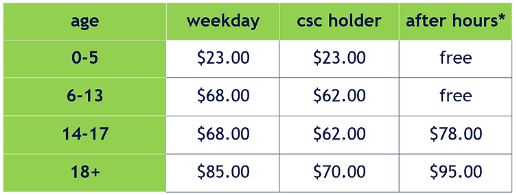 Casual Fees 2020.png