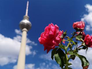 Berlin von unten
