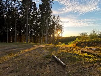 Sonnenuntergang irgendwo in Schweden