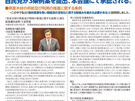 12月定例議会報告 | 佐藤純 県政通信臨時号