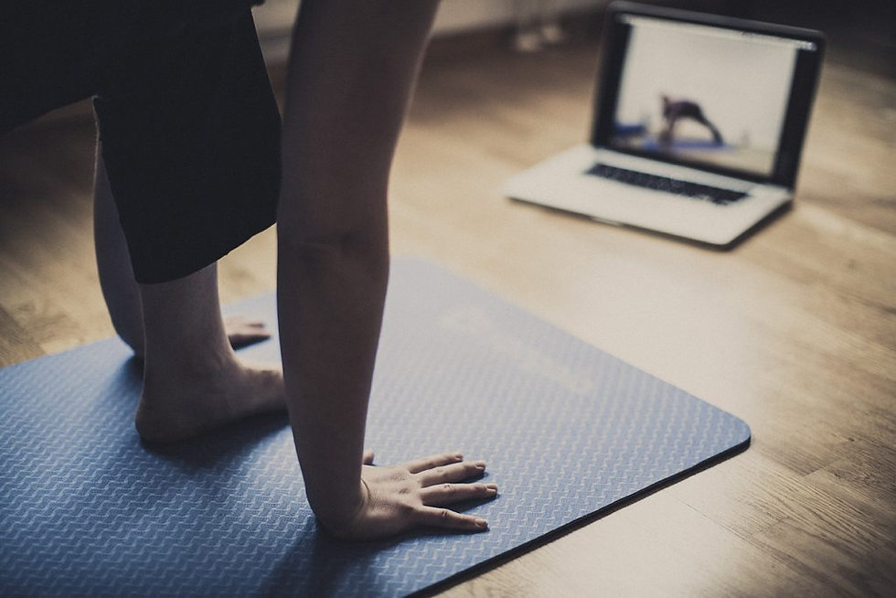 online-workout-1024x683.jpg