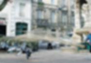 AERHO pigeons en ville