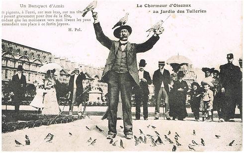 CP pigeon charmeur oiseaux tuileries.jpg