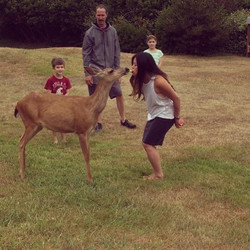 Today I got to feed a wild deer, from my mouth 🍎 the most tame wild deer I've ever met 💗 #film #ac