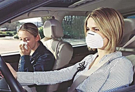 Metro Detroit Auto Detailing Kills Germs