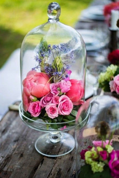 fleurs_colorées_sous_cloche.jpg