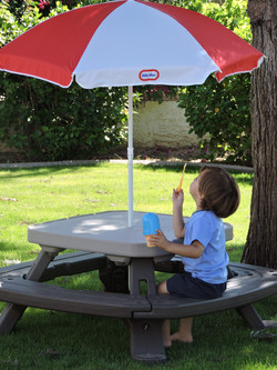 Fold 'n Store Picnic Table