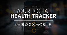 Cyberboxx | Website - Body_Business - BO