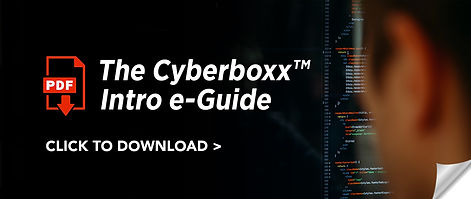 Boxx Tools Button - PDF The Cyberboxx In