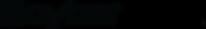 Cyberblack™ Logo - Black.png