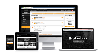 Cyberboxx Website | Products - Image_Dev
