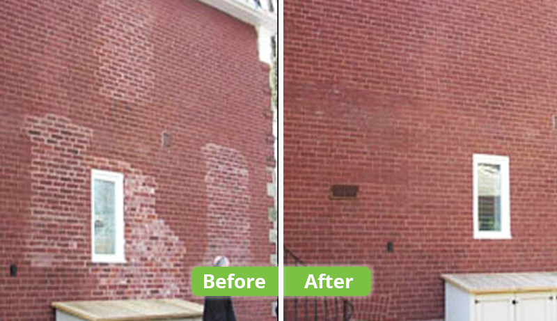 PermaTint Website   Image - Before After