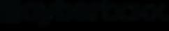 Cyberboxx™_Professional_Edition_Logo_-_B