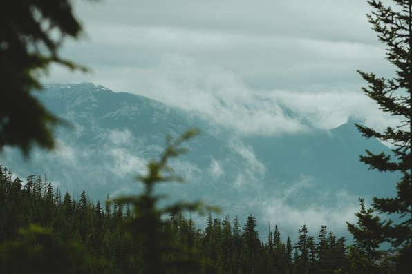 Skyline Ridge