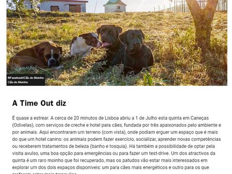Cão do Moinho na TimeOut Lisboa