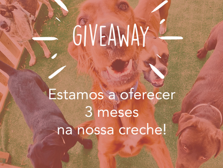 Regulamento GIVEAWAY - 3 meses de creche no Cão do Moinho