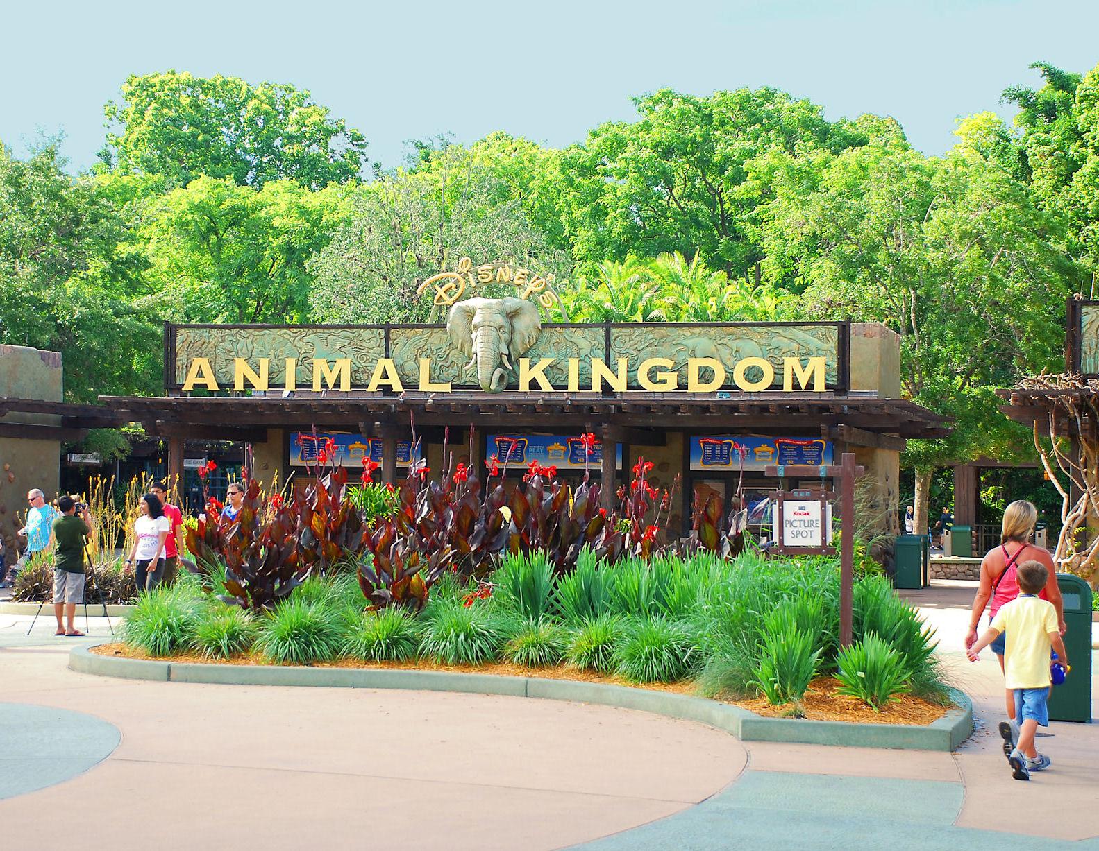 Animal Kingdom Entrance GO USA