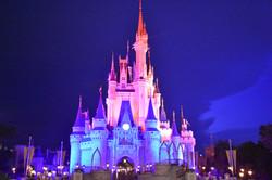 Magic Kingdom GO USA