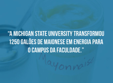 Curiosidade Sobre a Michigan State University