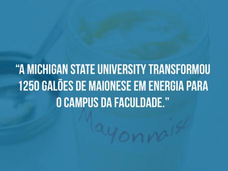 Curiosidade Sobre a Michigan State University