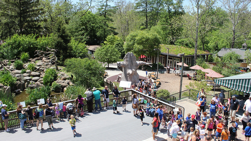 photo courtesy of https://www.visitphilly.com/things-to-do/attractions/the-elmwood-park-zoo/