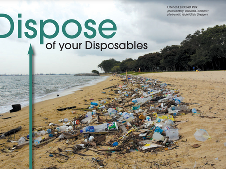 Dispose of your Disposables