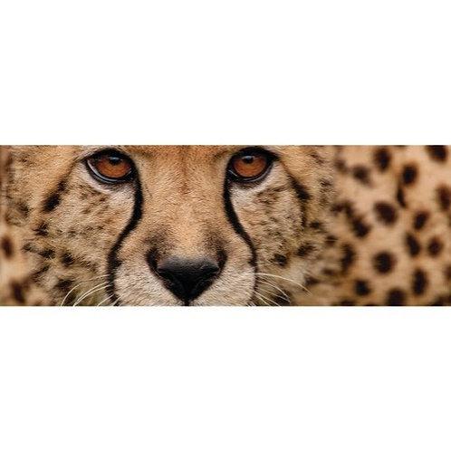 Cheetah Scarf