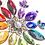 Thumbnail: Rainbow Jewel Flower