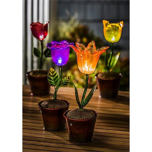 Red Flower Secret Solar Flower Pot