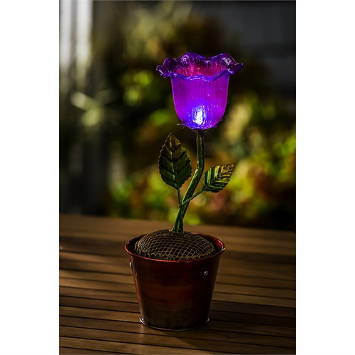 Purple Tulip Secret Solar Flower Pot