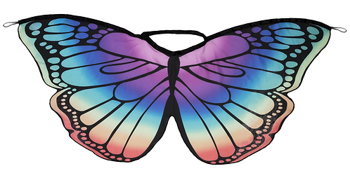 Rainbow butterfly wing cape
