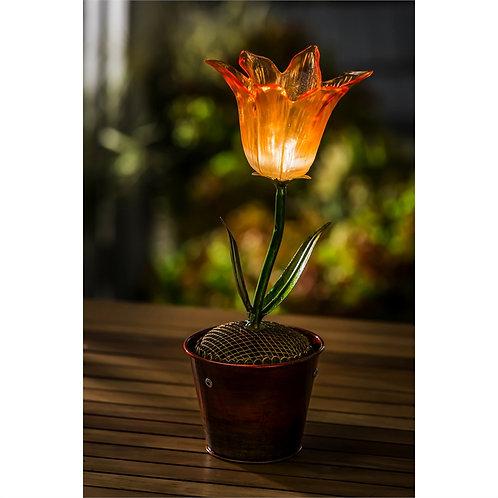 Orange Flower Secret Solar Flower Pot